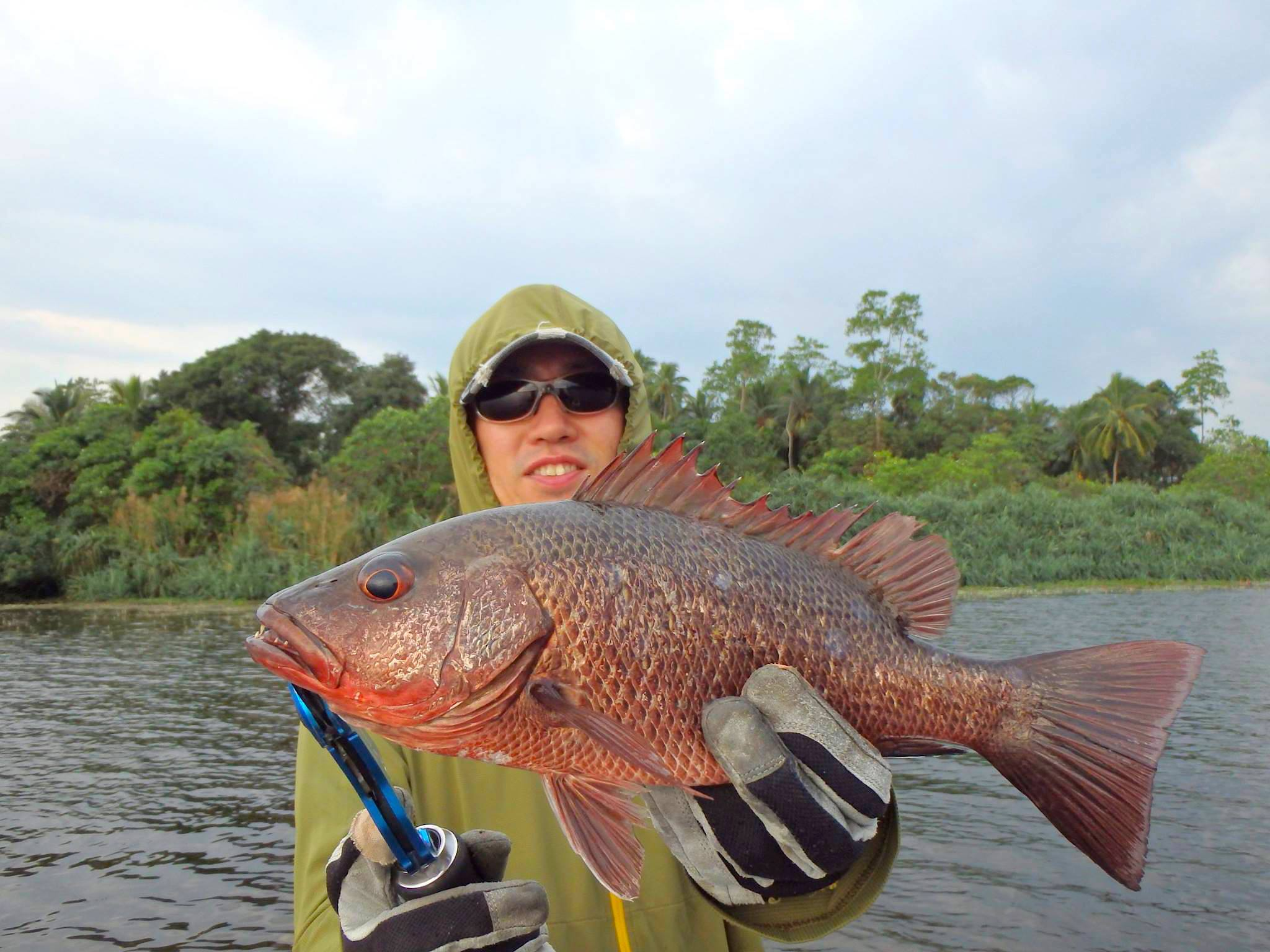Lure fishing Sri Lanka Mangrove Jack .jpg
