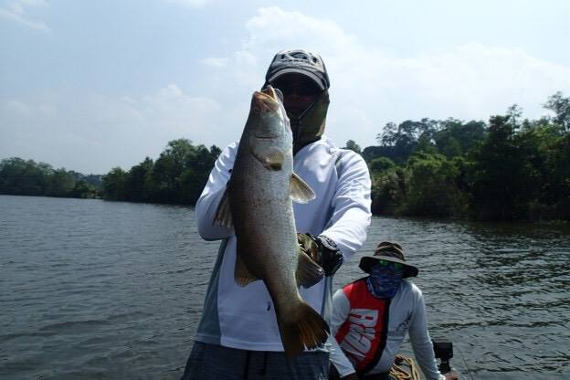 Barramundi Fishing Bolgoda Lake.jpg