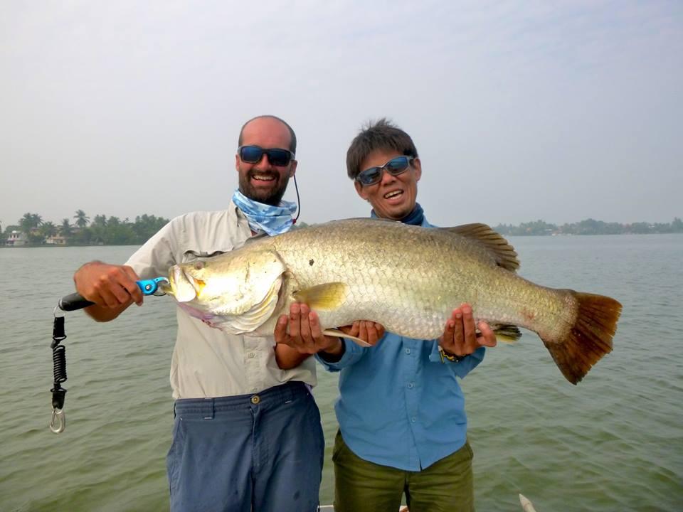 Big Barramundi Sri Lanka Bolgoda Lake.jpg