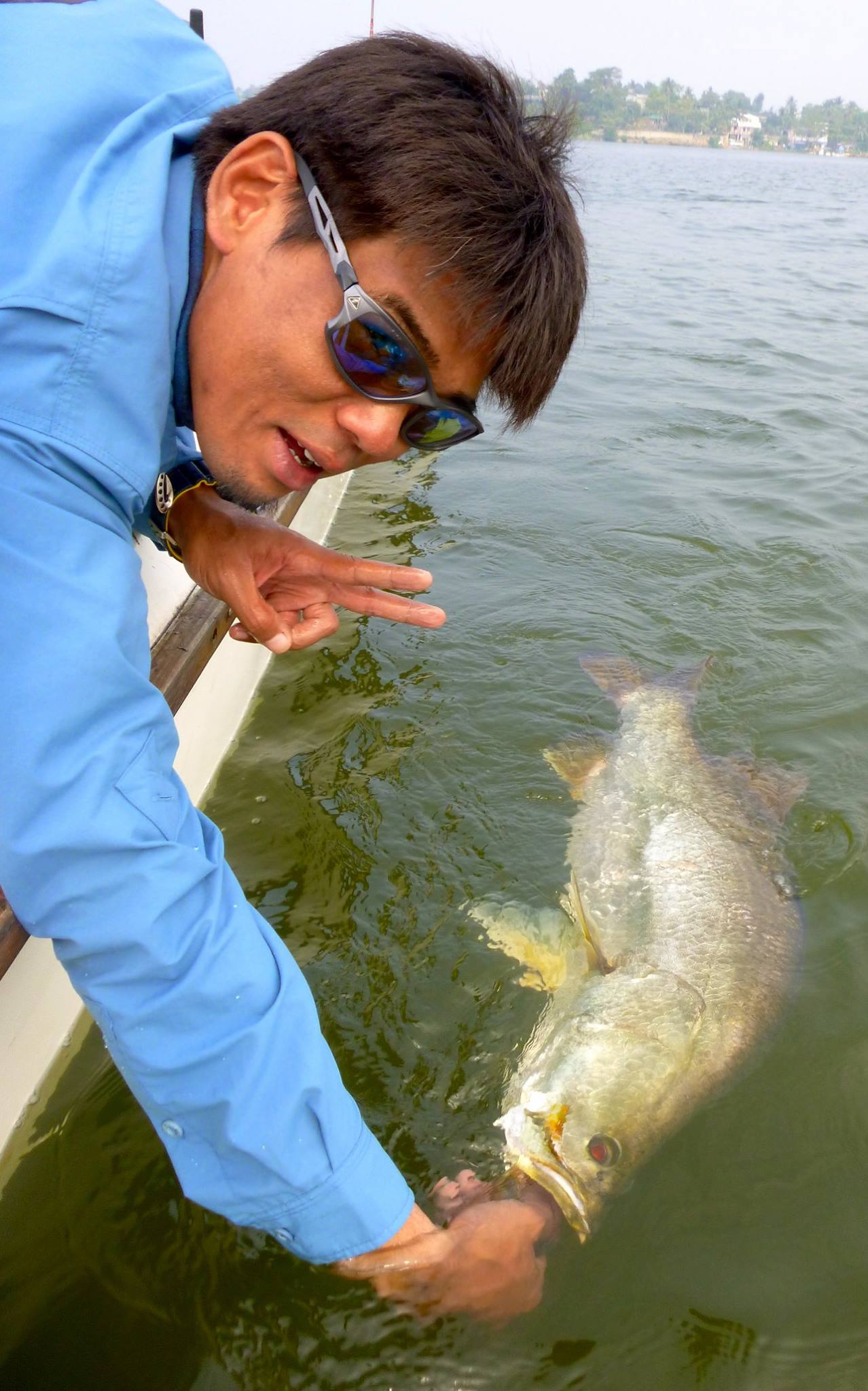Barramundi fishing Sri Lanka Bolgoda Lake.jpg