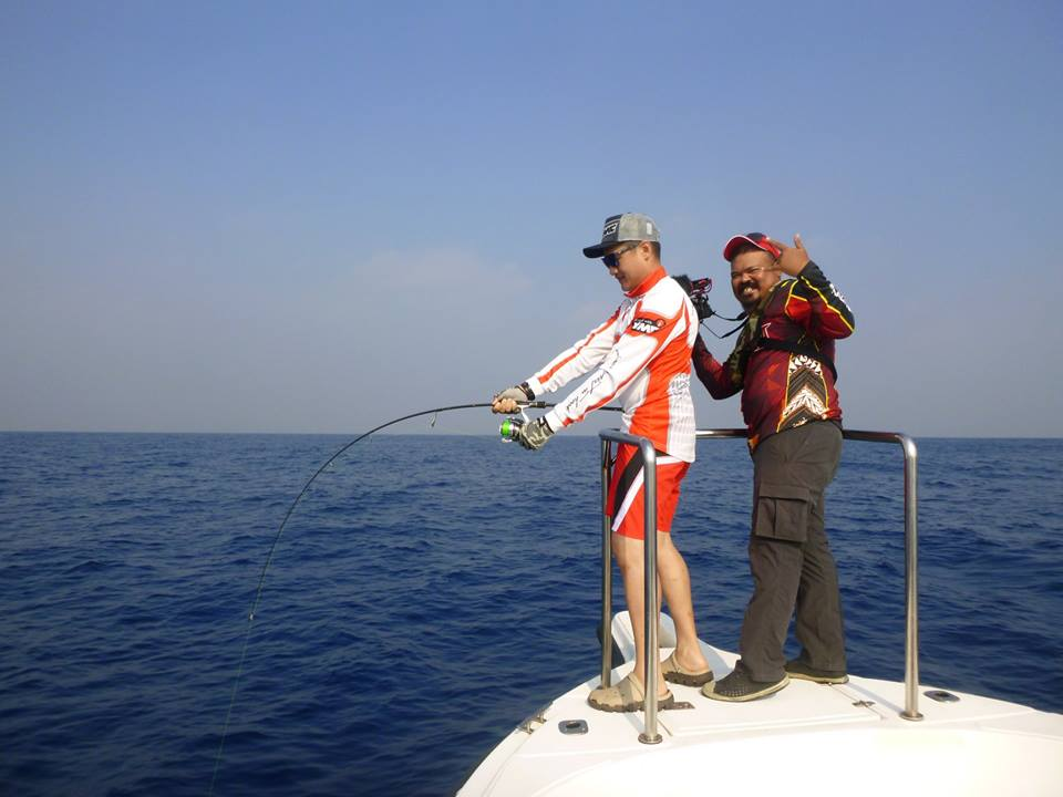 VMC Hook Jigging Assist Hook Sri Lanka.jpg