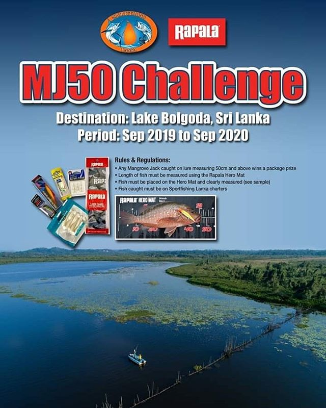 MJ50 Challenge !!! Come fishing with us to catch a big mangrove jack to win a Rapala package prize. #rapala #rapalalures #rapalafishing #vmchooks #sportfishinglanka #catchandrelease #bolgodalake #fishingsrilanka #srilankafishing #fishingsrilanka