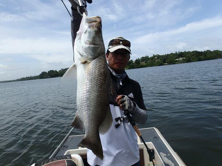 Fishing in Sri Lanka Bolgoda lake.jpg