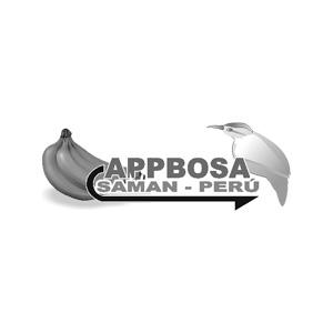 APPBOSA.jpg