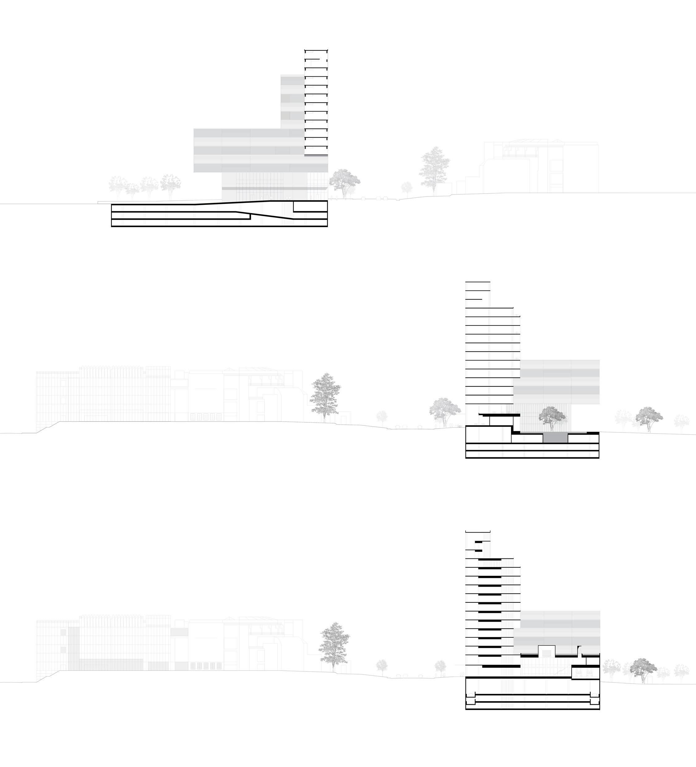 29 OMP_Sections-01.jpg