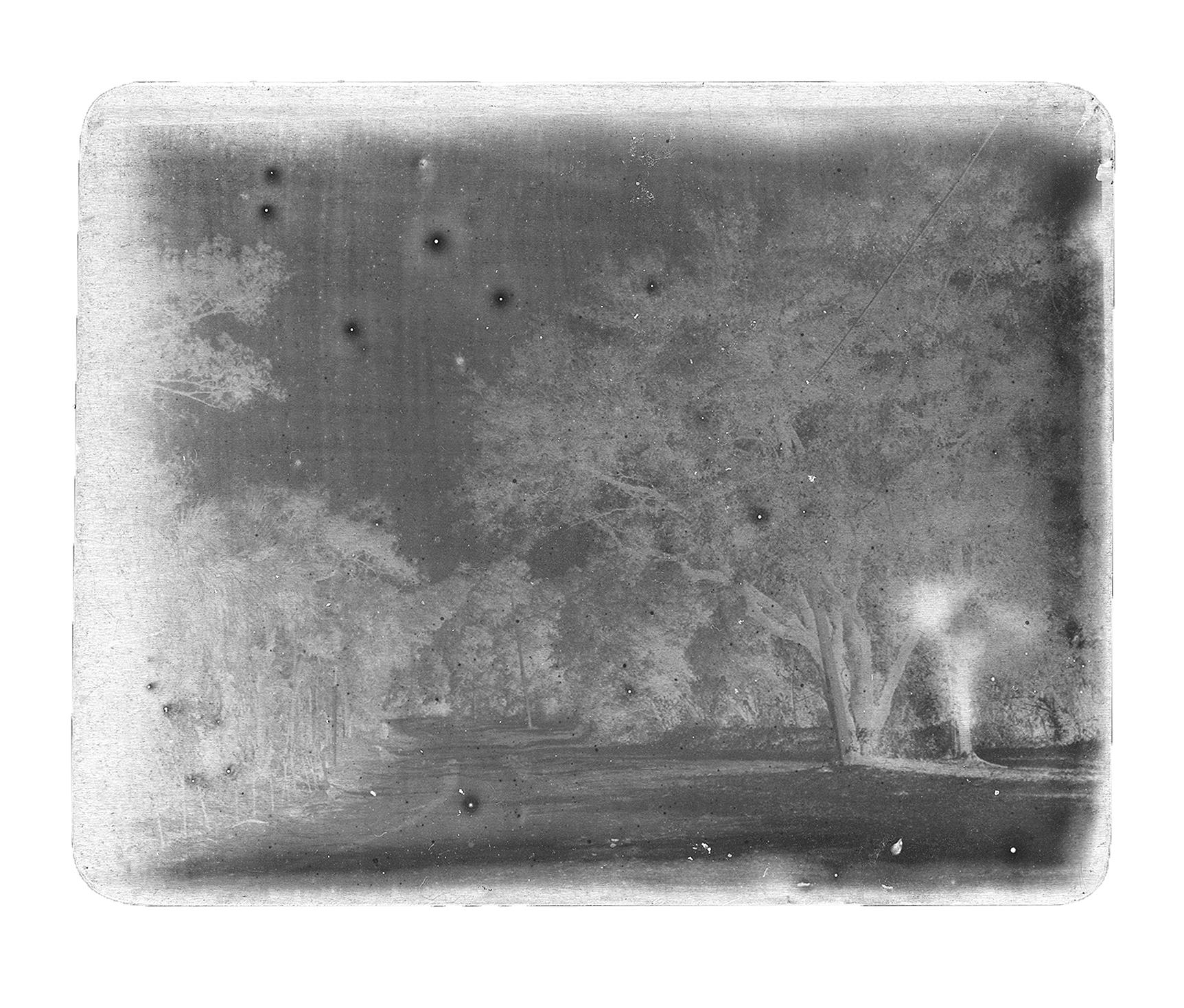 "Silver Gelatin Print on aluminum. 4""x5""."