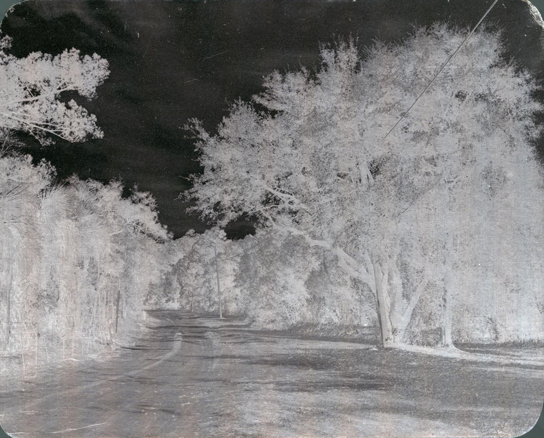 """Archival Pigment Print on aluminum. 4""""x5""""."""