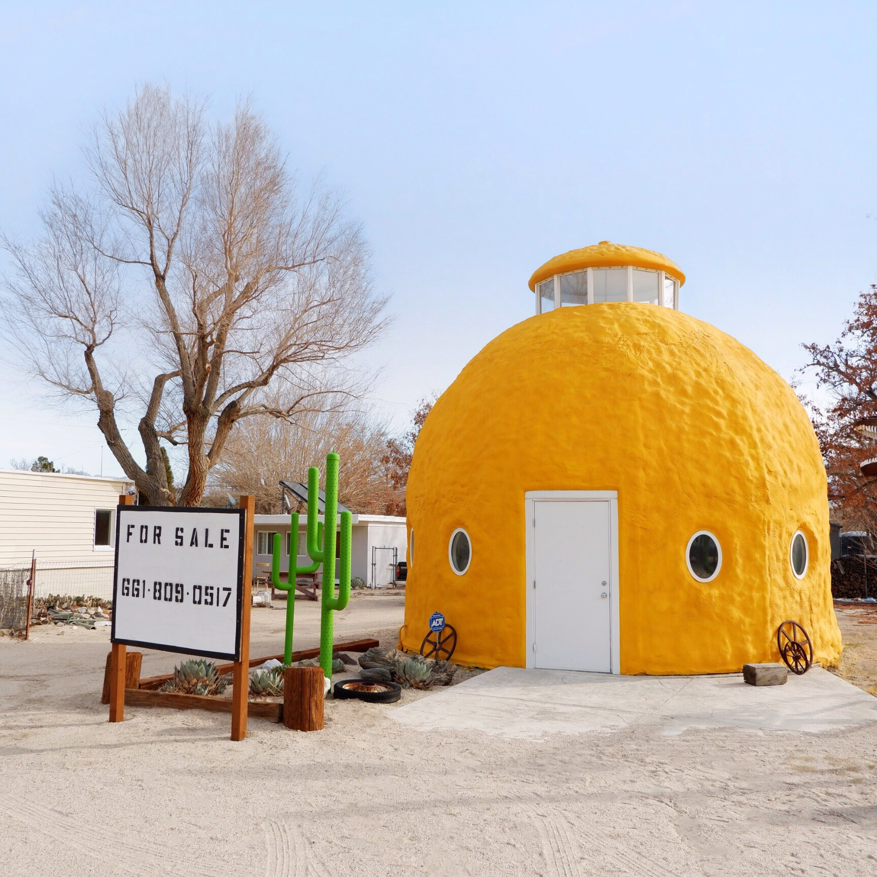 Lemon Dome.jpg