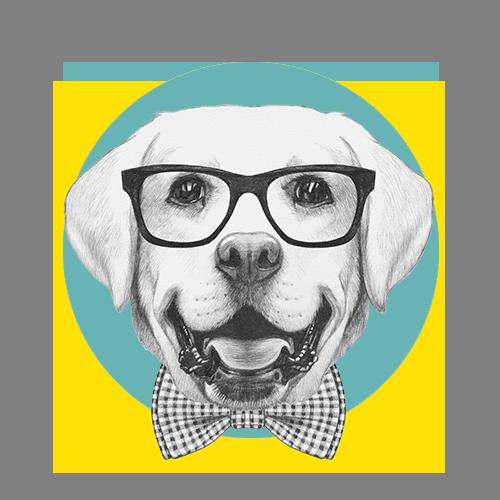 Dog-Grooming-Regina5.png