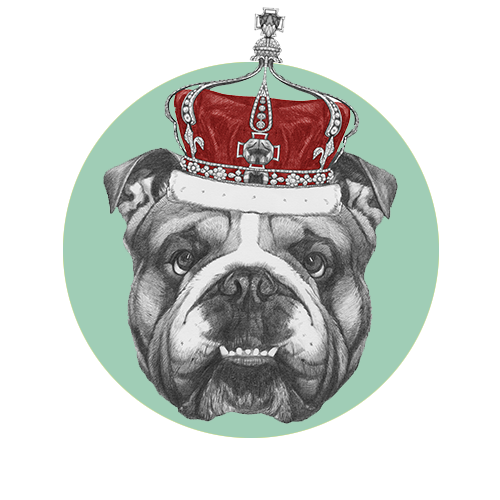 Regina-Dog-Grooming-Services5.png