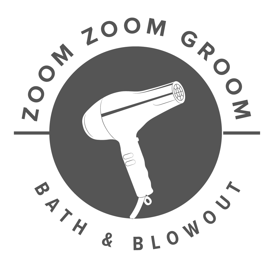 Pet Bath and Blowout