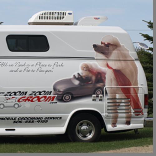 Mobile-dog-grooming-regina