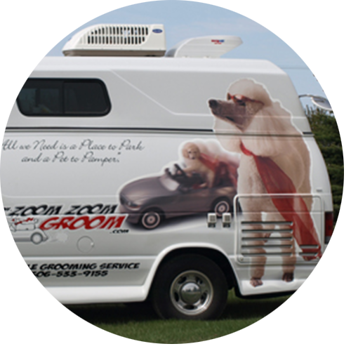 mobile dog and cat grooming