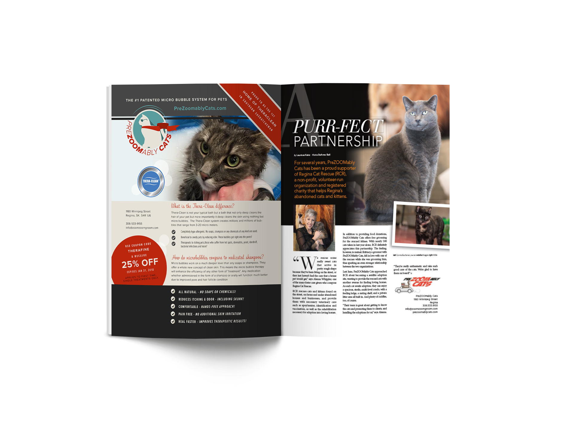 Purr-fect Partnership: PreZoomably Cats Regina