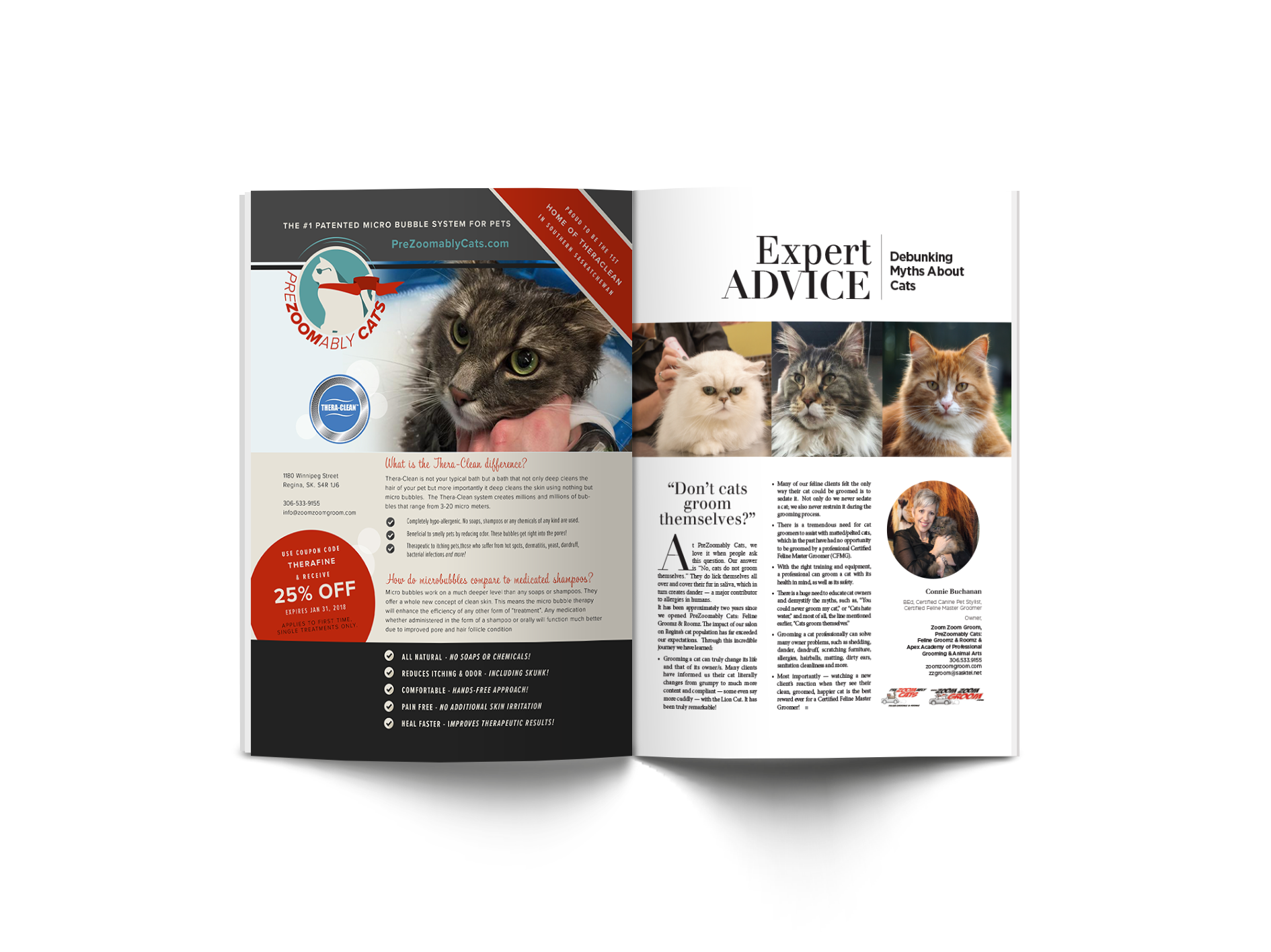 Expert Advice by Connie Buchanan: Debunking Myths About Cats