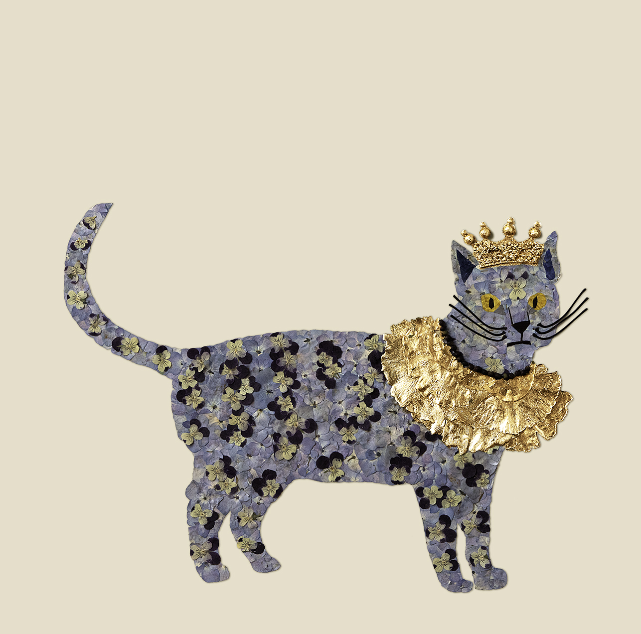 House of Royals / Salvador The Cat