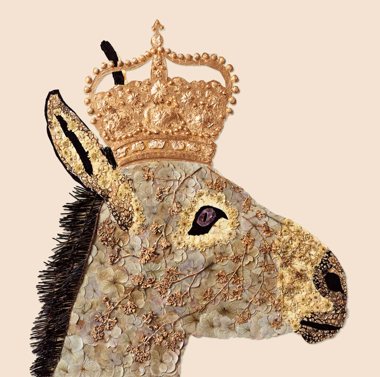 House of Royals / Charles The Donkey