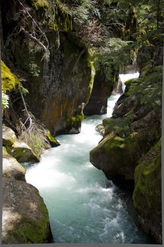00_04_MT_Stream_Avalanche Creek.jpg