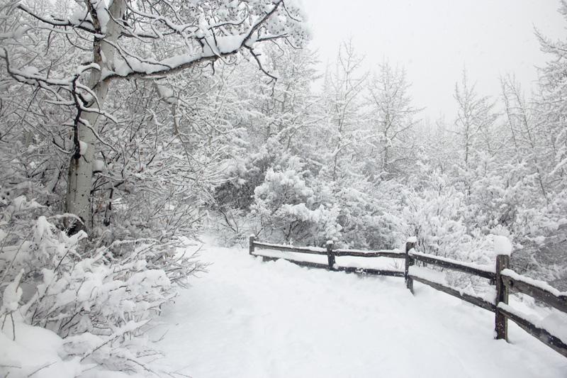 02_11_CO_Trailhead White.jpg