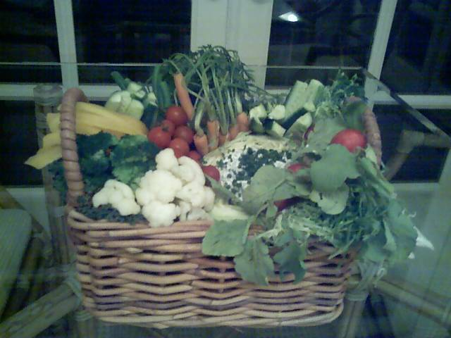 Vegetable Basket   Great for entertaining. Basket size does not matter. Any basket will do. Just have fun with this.   The amounts do not matter, you can make this with what you have on hand.   I used, blanched cauliflower, blanched broccoli, a bunch of radishes with the tops left on. Baby carrots with tops left on. cherry tomatoes, cucumber slices, yellow bell pepper slices , celery slices, mushrooms and  1/2 of a cabbage(Take out some of the inner leaves) to hold the dip. Place the cabbage in the basket and work around it.   Buy some Kale or other decorative lettuce and line a basket with the lettuce creating a bed.   Start putting your vegetables in the basket, I like to make it looked like a basket of freshly picked vegetables.   For the dip   1 cup non fat Greek style yogurt   ¼ cup mayonaise   1 cucumber, seeded   2 Tbsp. fresh dill   ¼ tsp sea salt   Place all ingredients in a blender.   Pour the dressing into the ½ piece of cabbage.