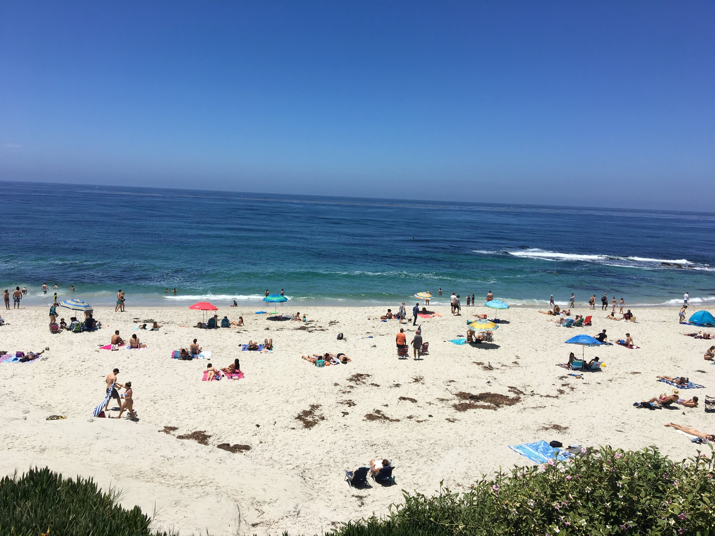 You can find me here at the beach in La Jolla for the foreseeable future. Photo by Ranger Holly.