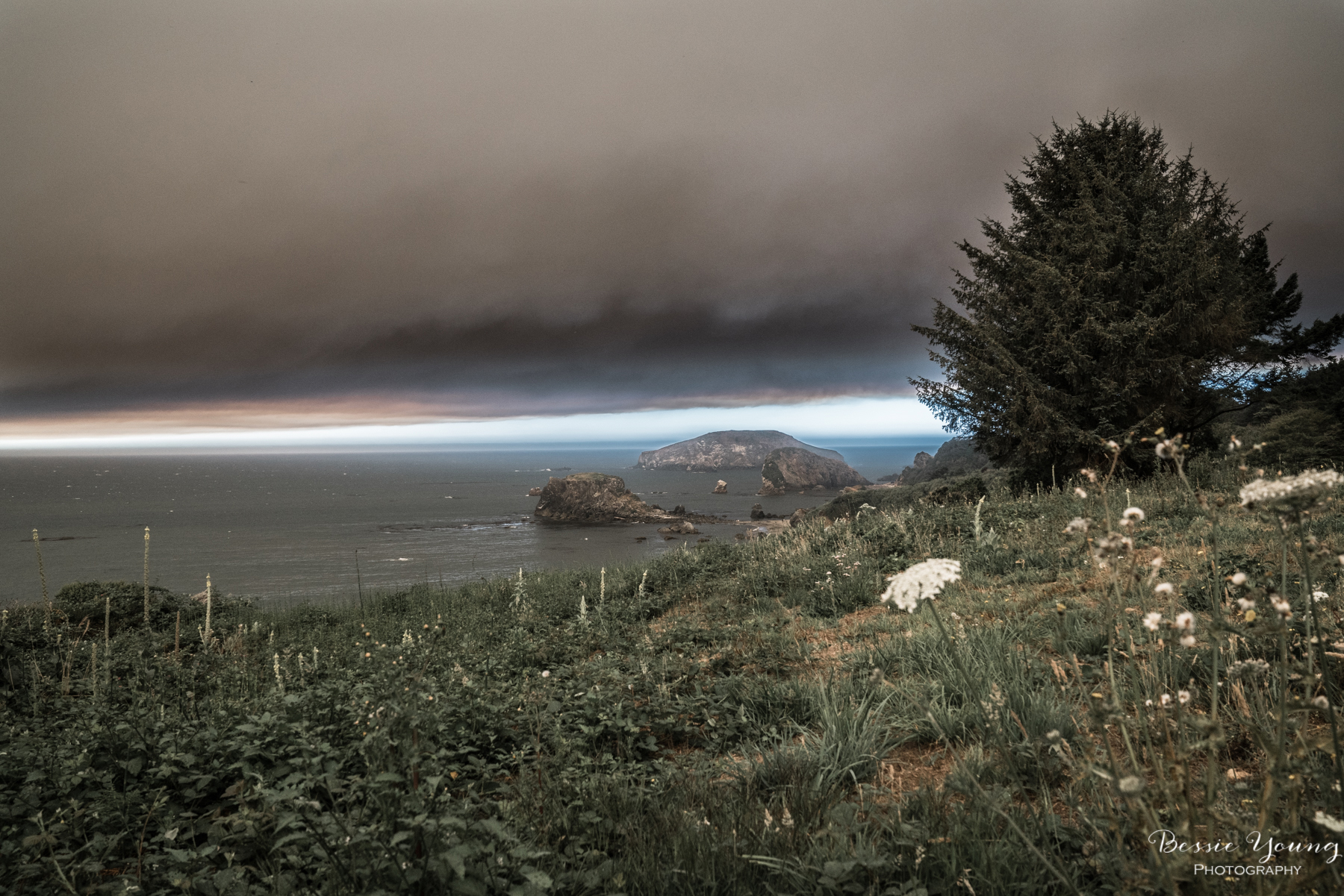 Chetco Bar Fire Brookings Oregon 2017 - Bessie Young Photography-2.jpg