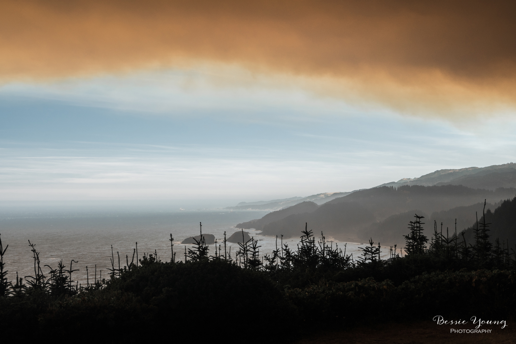 Chetco Bar Fire Brookings Oregon 2017 - Bessie Young Photography-19.jpg