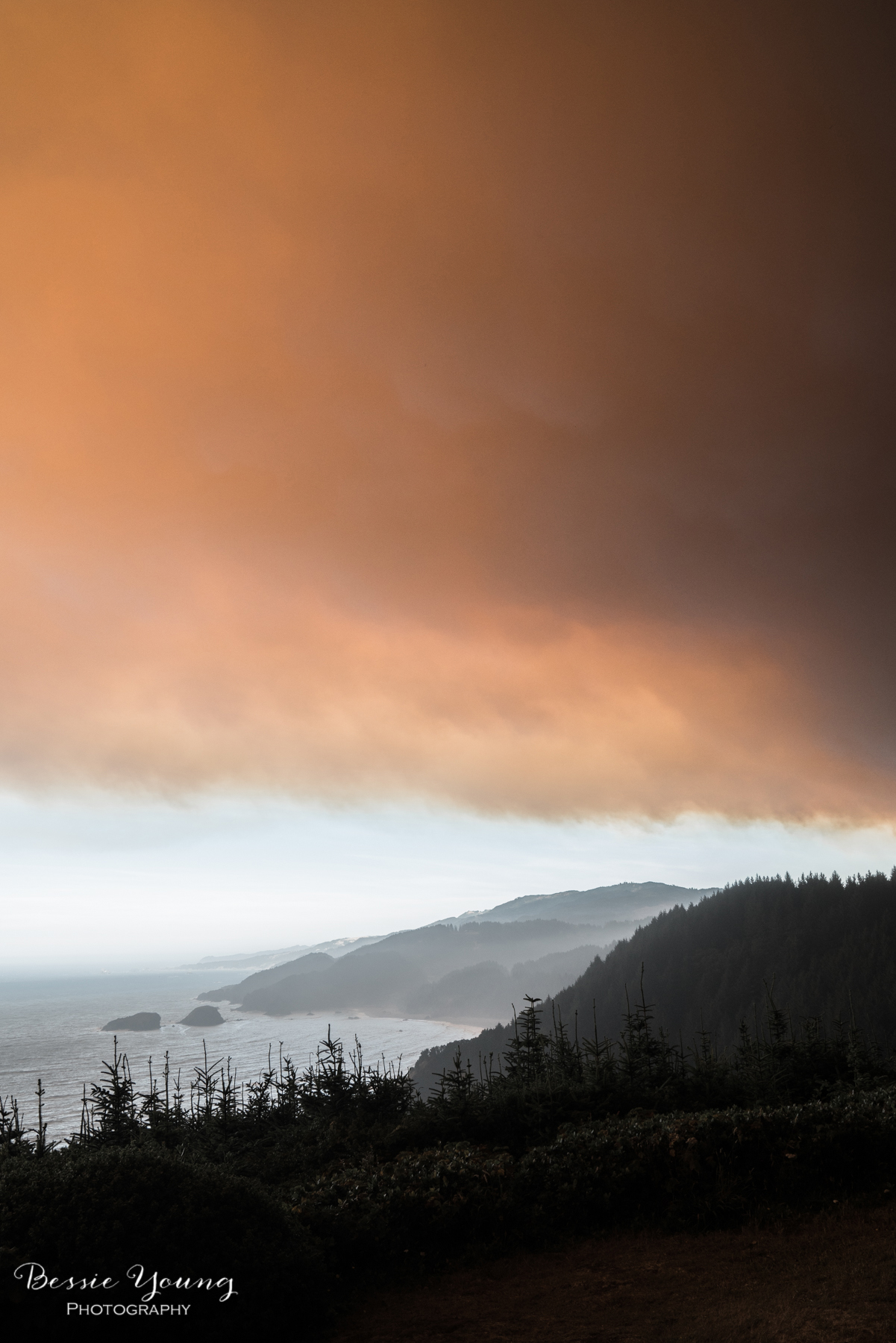 Chetco Bar Fire Brookings Oregon 2017 - Bessie Young Photography-4.jpg