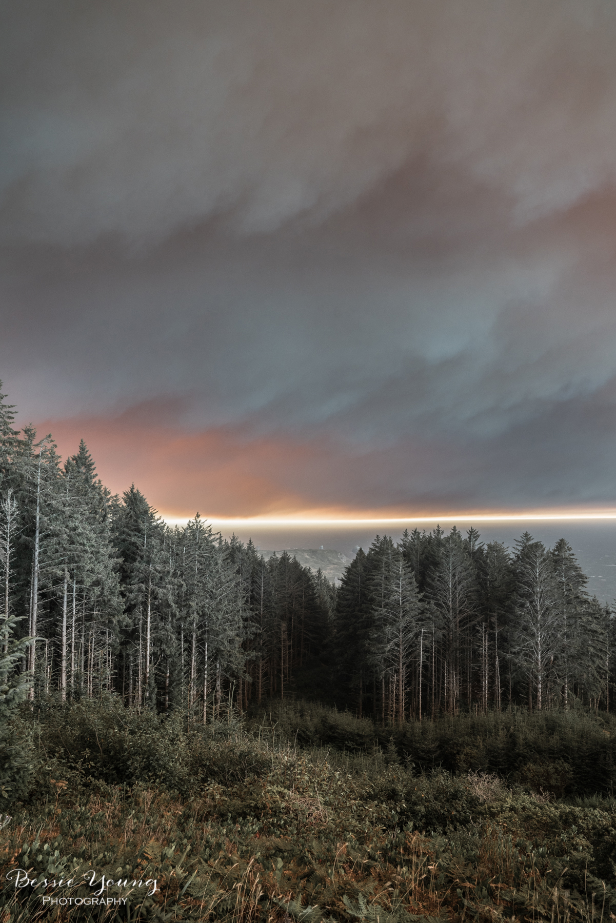 Chetco Bar Fire Brookings Oregon 2017 - Bessie Young Photography-5.jpg
