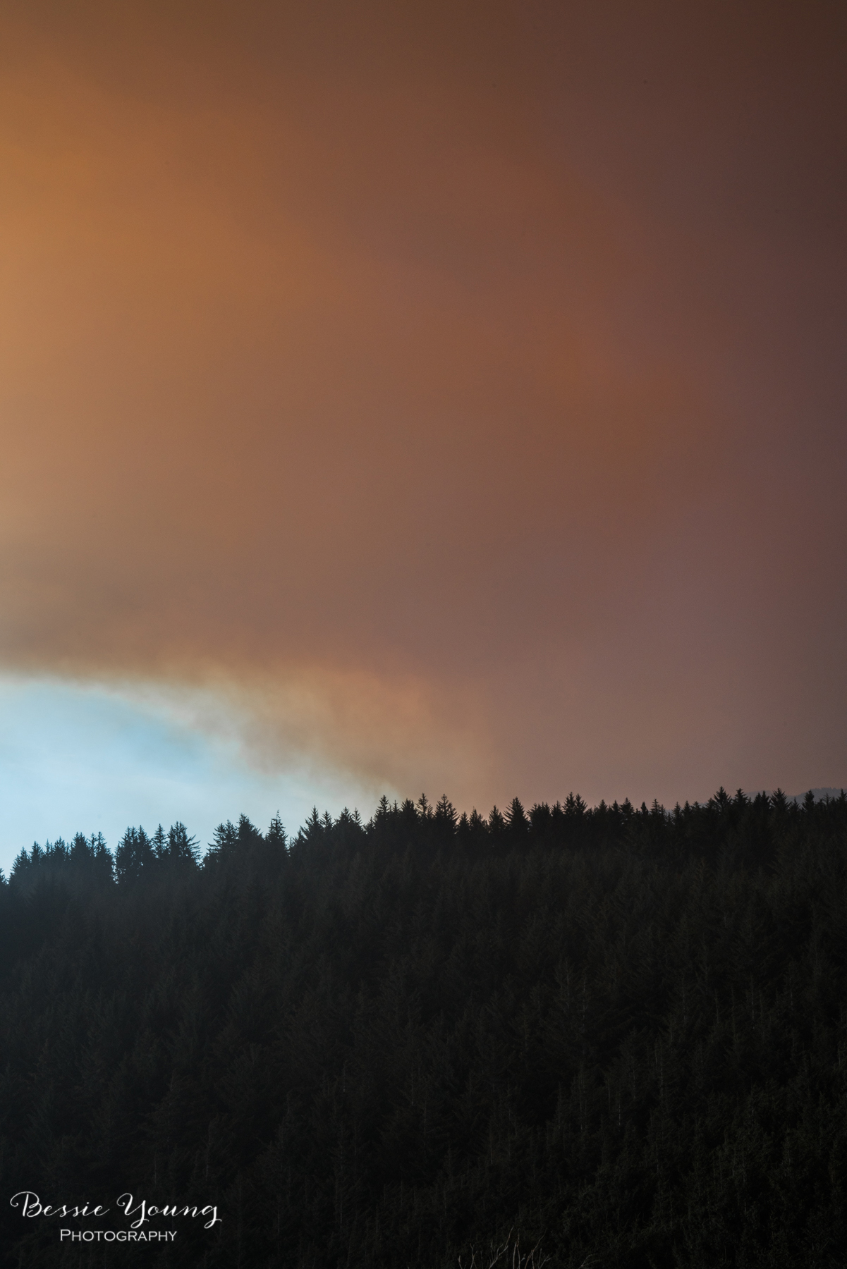 Chetco Bar Fire Brookings Oregon 2017 - Bessie Young Photography-17.jpg