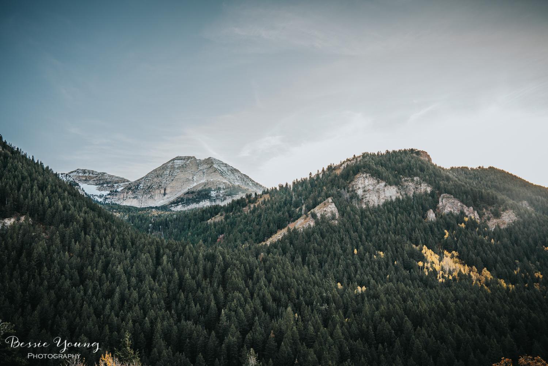 Alpine Loop Utah - Bessie Young Photography 2017-9.jpg