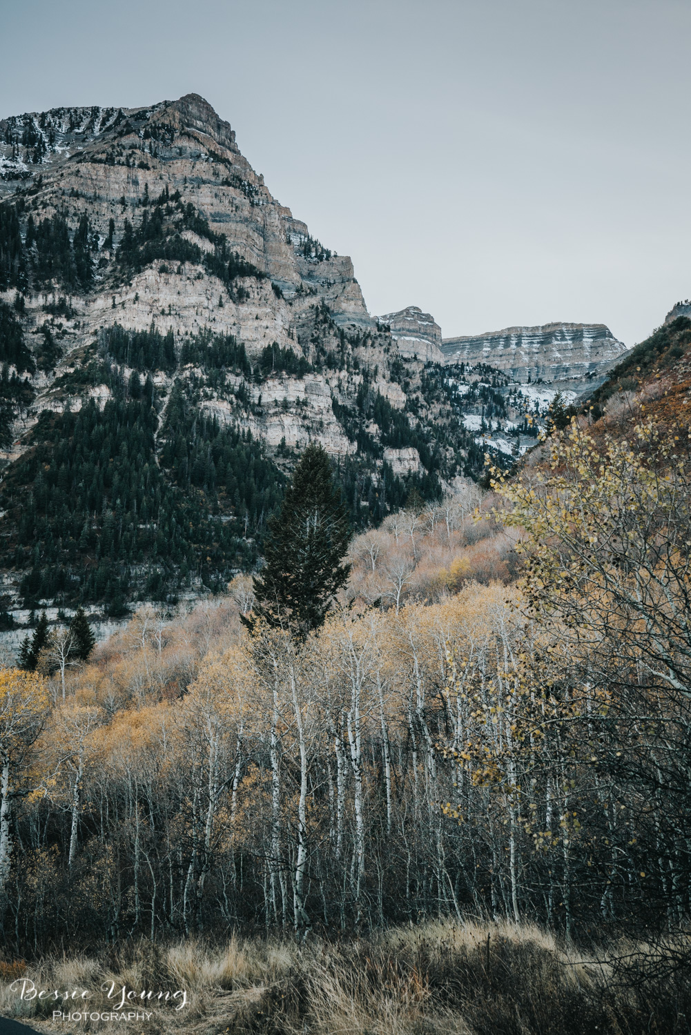 Alpine Loop Scenic Drive , Utah - Places to Visit in Utah by Adventuring of a Small Town Girl (ASTG)