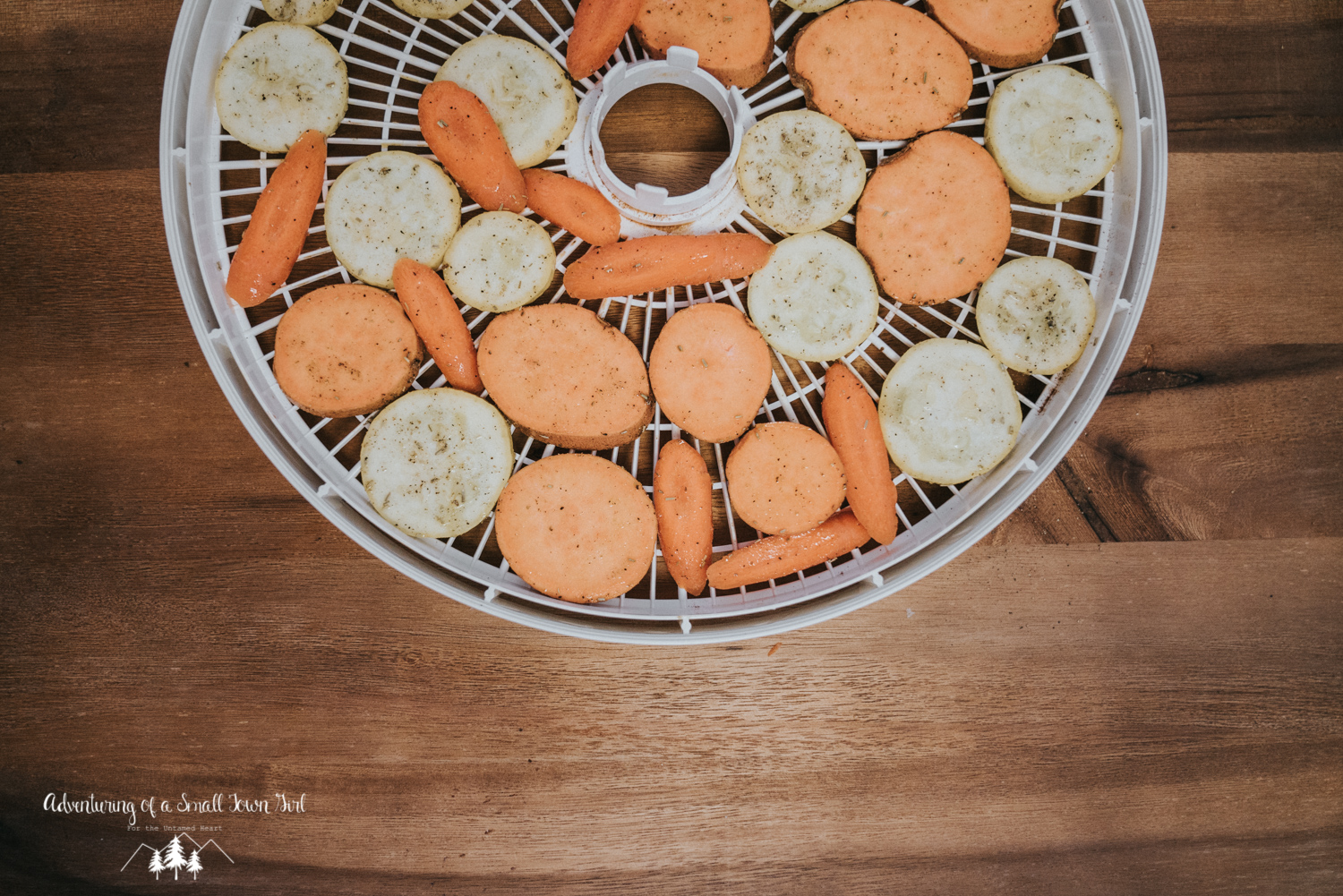 Dehydrated Vegetable Chips By Adventuring of a Small Town Girl (ASTG) - Backpacking Recipes - Recipes for Adventures - Dehydrated Recipes - Paleo Backpacking Recipes-3.jpg