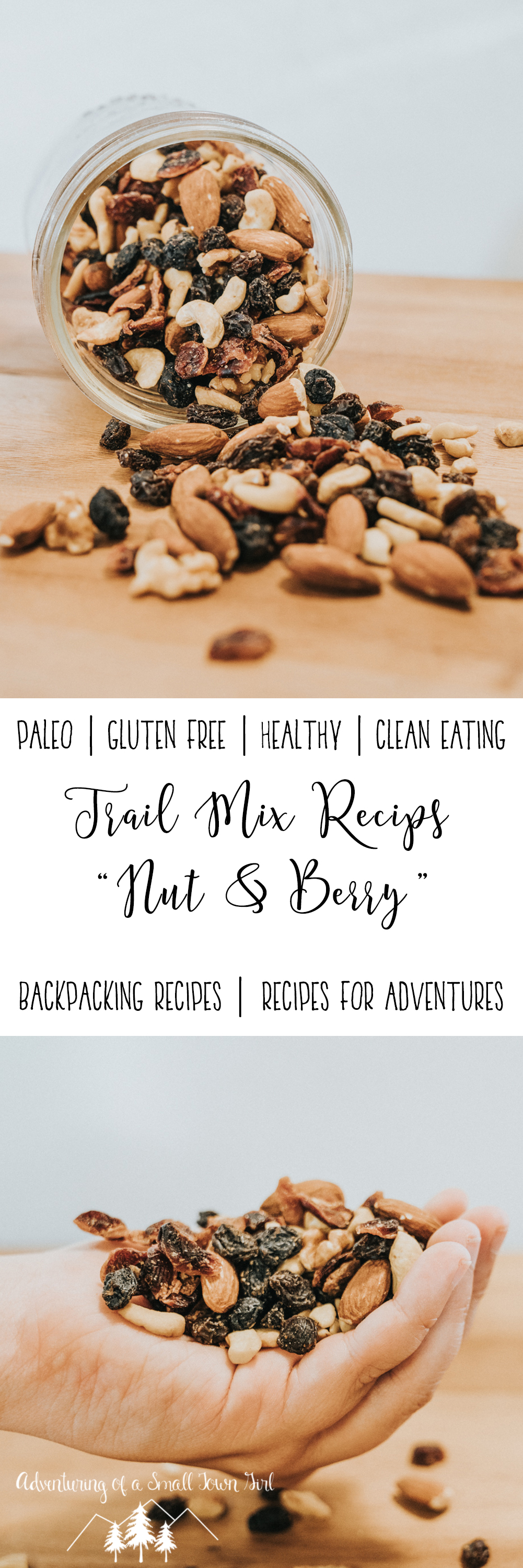 Homemade Trail Mix Recipe Nut and Berry Trail Mix by Adventuring of a Small Town Girl (ASTG) - No Bake Raw Vegan Trail Mix - Make your own trail mix.jpg