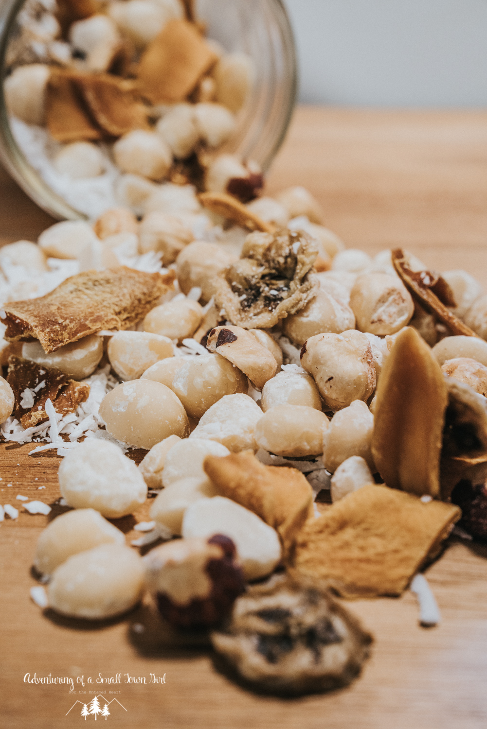 Homemade Trail Mix Recipe by Adventuring of a Small Town Girl (ASTG) - No Bake Raw Vegan Trail Mix - Tripical Trail Mix - Make your own trail mix