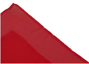red scarf 2.JPG