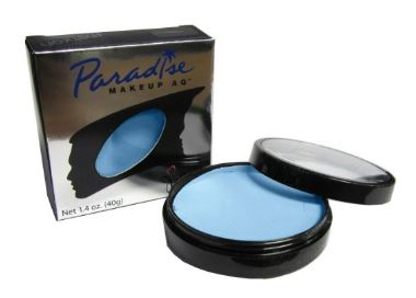 light blue body paint.JPG