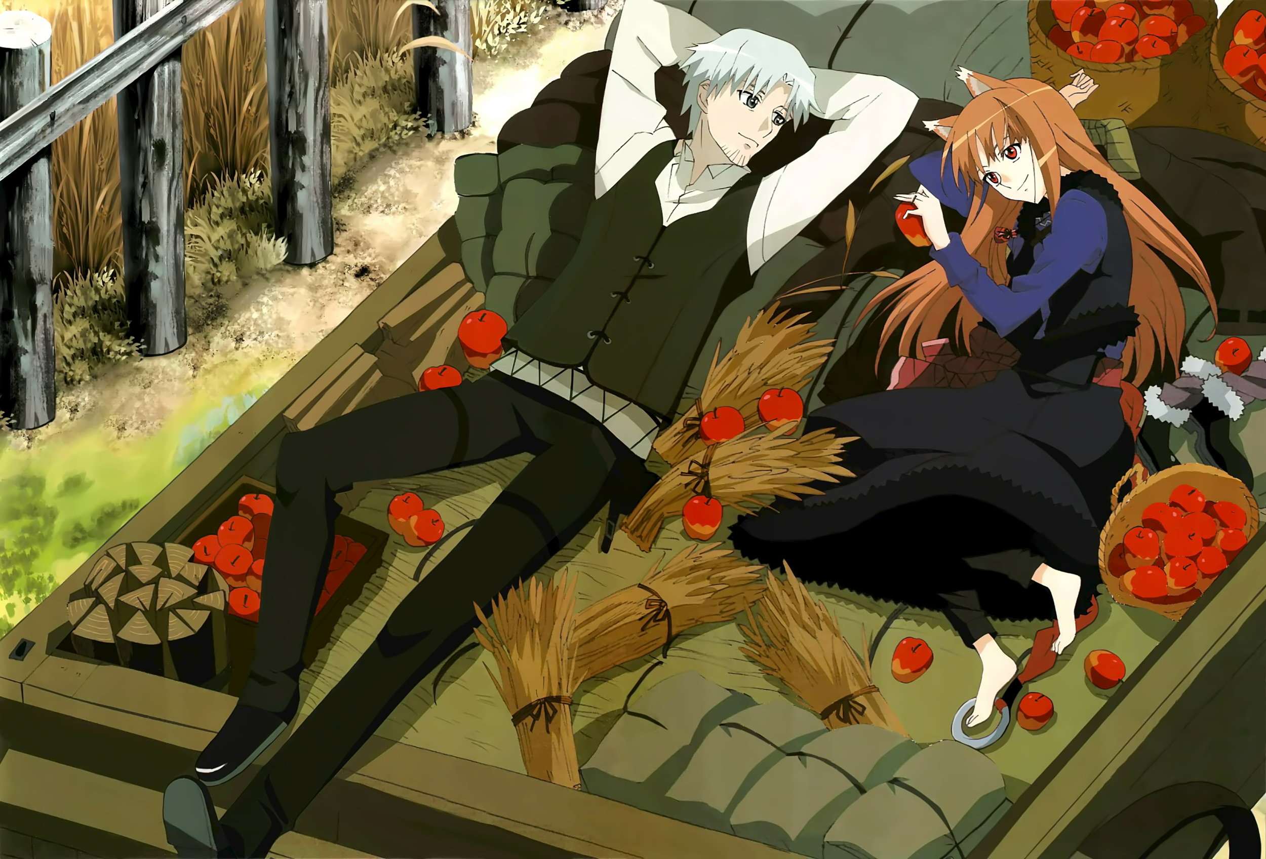 5 spice and wolf.jpg