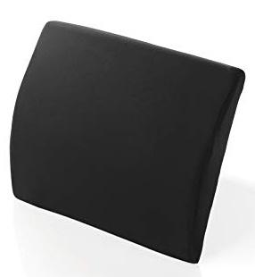 9 lumbar cushion.jpeg