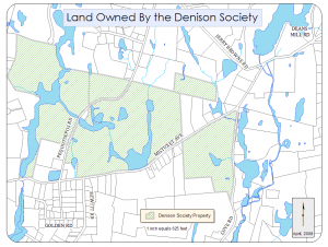 Denison Property