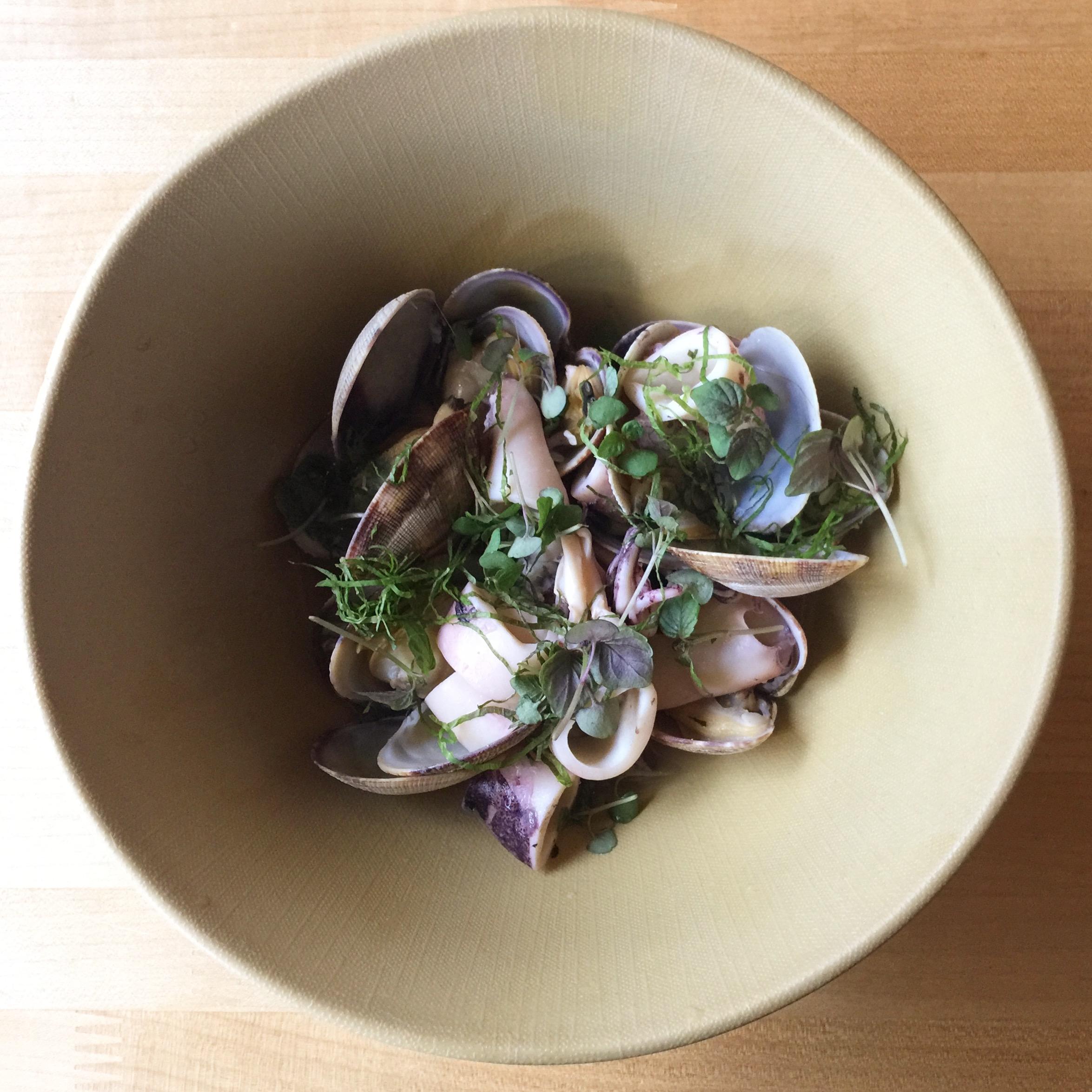 clams .JPG