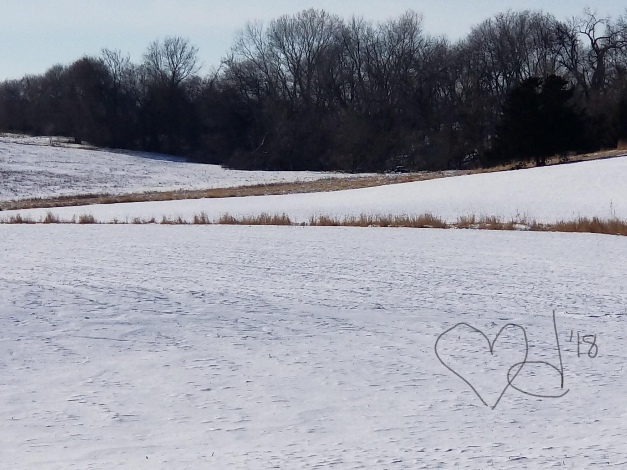 winter blank canvas.jpg