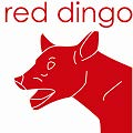 Red Dingo Login