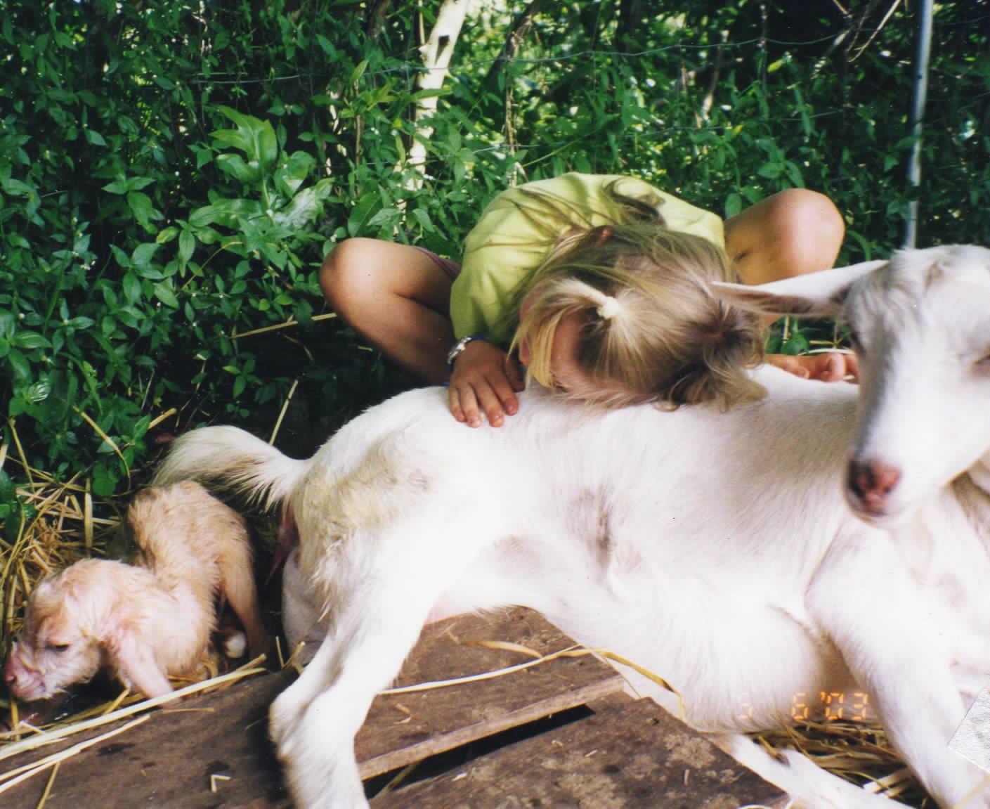 JA Pic 4 Jala & Goat.jpg