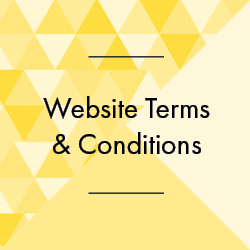 AdviSME Website Terms & Conditions Cube.png