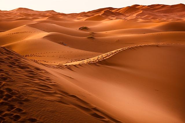 from sandbox to desert (CC0 Creative Commons license)