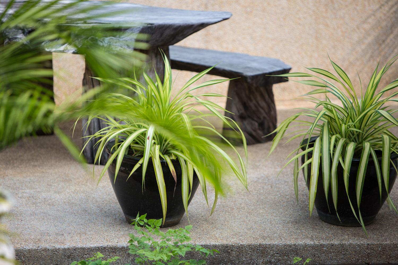 Baan_Jasmine_garden-10.jpg