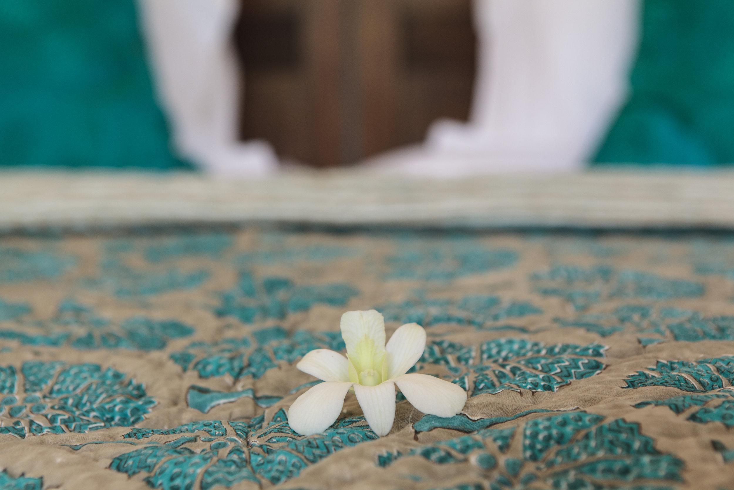 20130706-Bedroom_1_double_jasmine-009.jpg