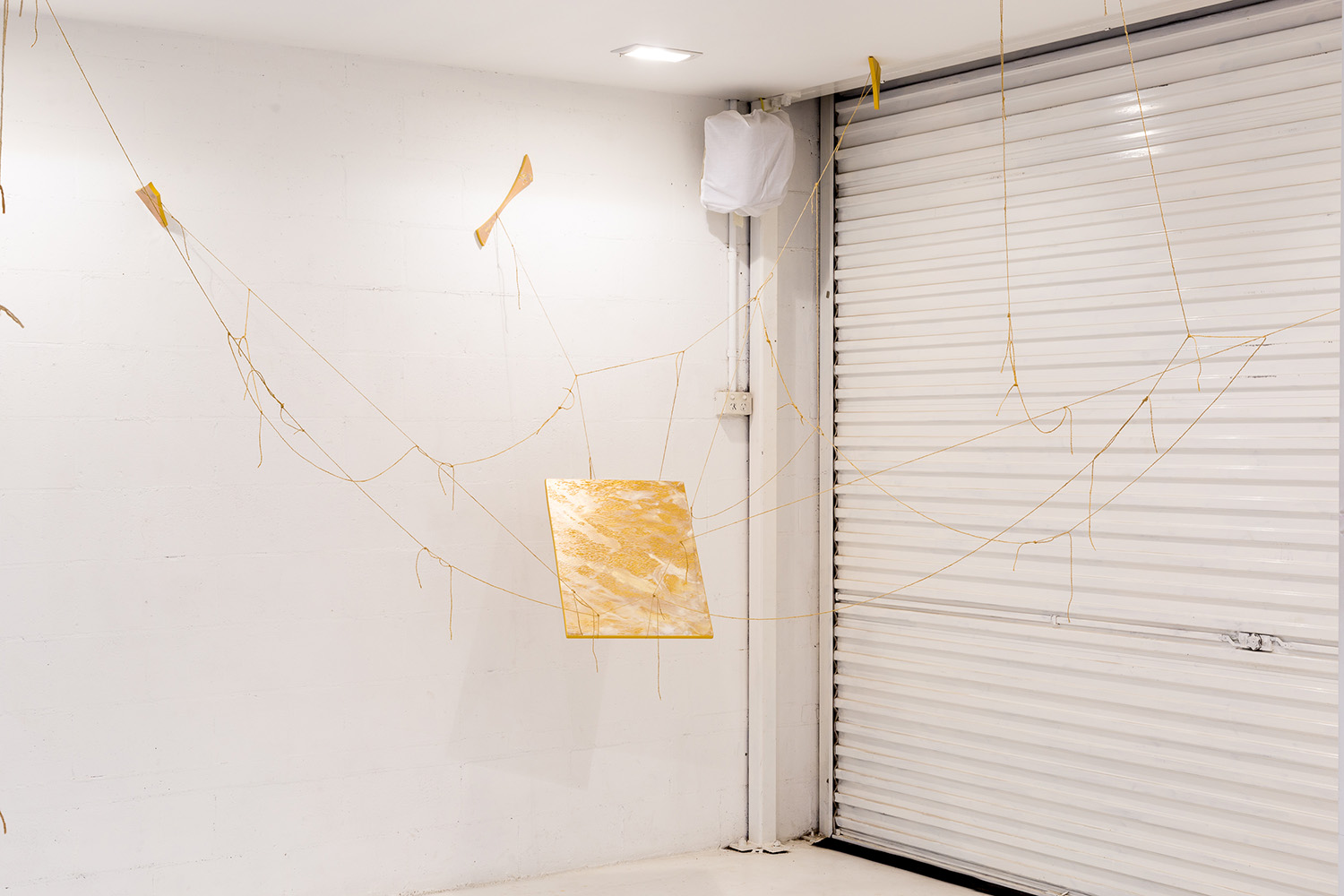 Le repos et la Lumière , 2019,  Le repos et la Lumière , 2019, acrylic on engraved Silky Oak ply, 60x44cm; support, acrylic plywood and twine, dimensions variable. (acquired)  Image: André Piguet