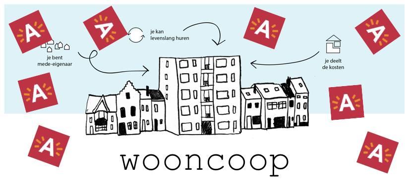 wooncoo 2p.jpeg